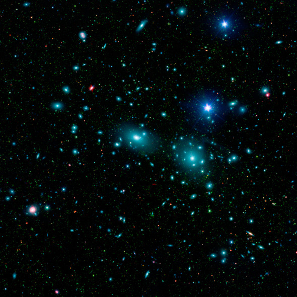 Dwarf Galaxies in the Coma Cluster